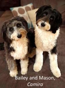 Bailey and Mason names